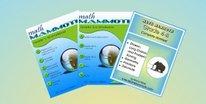 Mammoth Math ~ Light Blue Series Grade 3 ~ Schoolhouse Review Crew