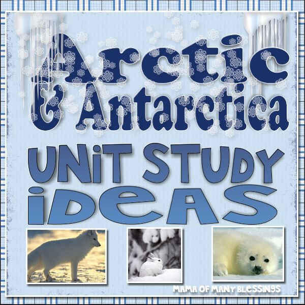 Arctic-and-Antartic-Unit-Study-Ideas
