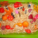 Fall and Halloween Sensory Table Ideas
