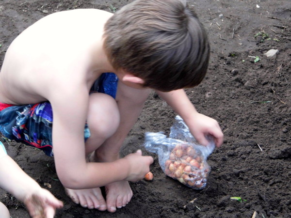 Gardening-With-Kids-3