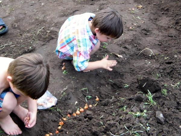 Gardening-With-Kids-8