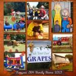 Harvest Days at Vineyard 354 Family Farm
