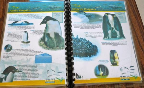 homeschool-planning-book-binding-3