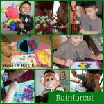 Rainforest Preschool Theme