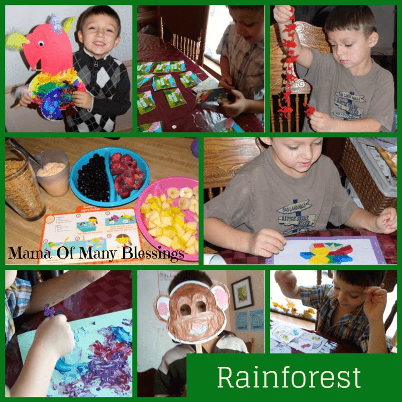 Rainforest Preschool Theme