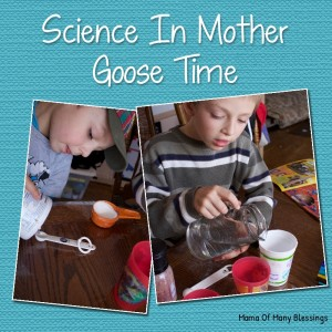 Homeschool Preschool Science