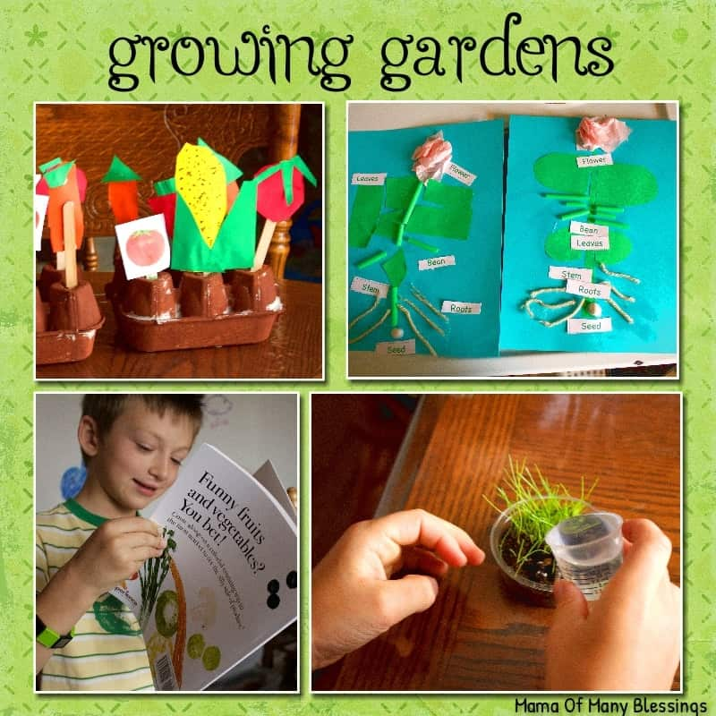 Growing Gardens Unit