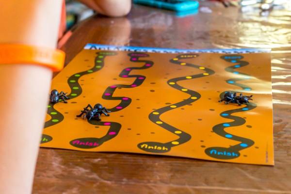 Board Games-16