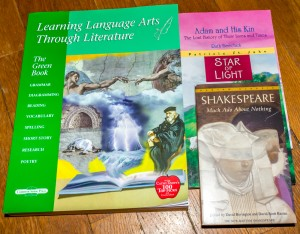 Learning Language Arts Through Literature