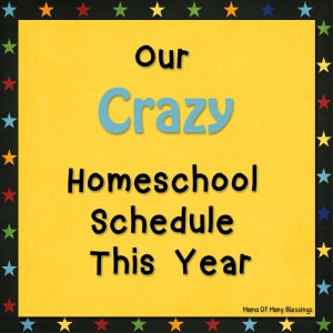 Our Crazy Homeschool Schedule This Year