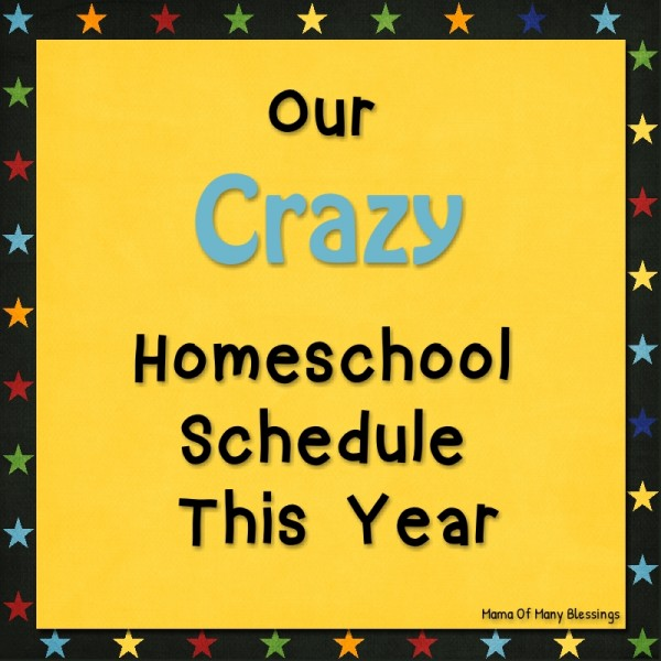 Crazy Homeschool Schedule This Year
