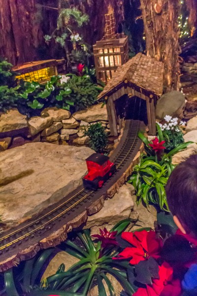 Christms Around The World - Meijer Gardens-66
