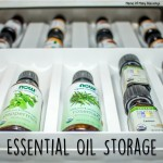 Wonderful and Simple Essential Oil Storage