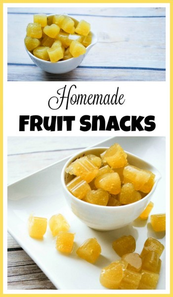 homemade-fruit-snacks