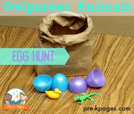 oviparous-animals-egg-hunt