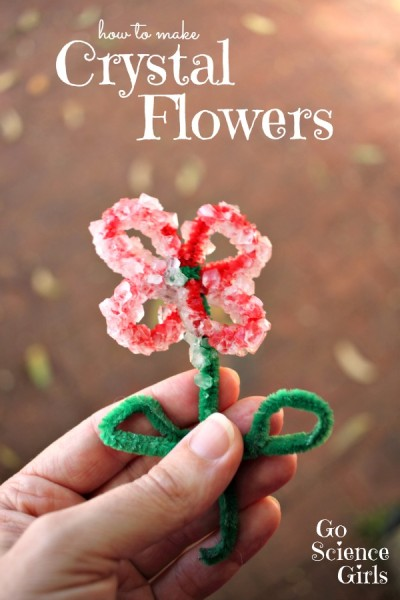 how-to-make-crystal-flowers-Spring-Kids-Craft