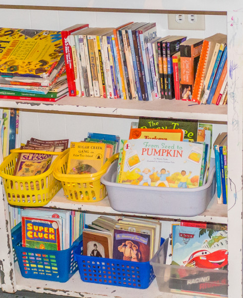 homeschool-library-1