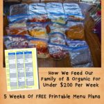 How We Feed Our Family of 8 For Less Then $200 A Week
