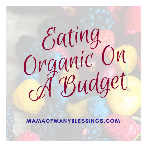 Eating Organic Food On A Budget square
