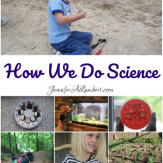 How-We-Do-Science