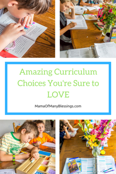 Amazing Curriculum Choices Youre Sure To LOVE Sonlight Pinterest Collage