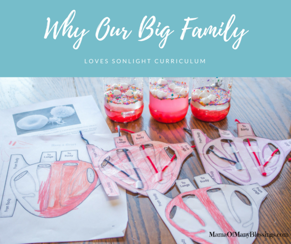 Why Our Big Family Loves Sonlight Curriculum