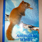 Human Body and Animals Adapt In Winter