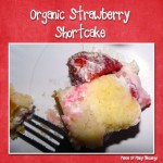 Organic Strawberry Shortcake