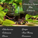 Elderberry Syrup with Echinacea and Rose Hips