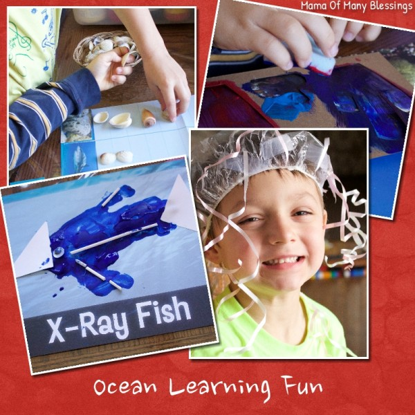 Ocean Learning Fun
