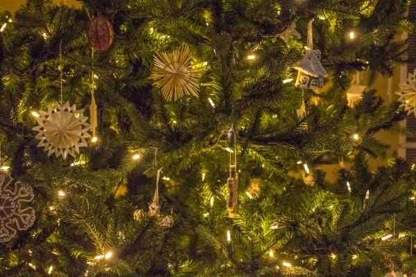 Christmas Around The World - Meijer Gardens-71
