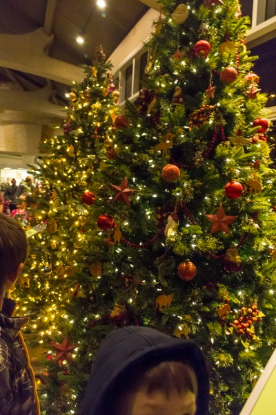Christmas Around The World - Meijer Gardens-2