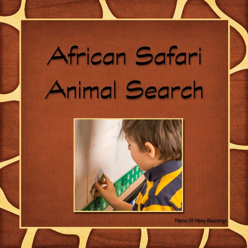 African Safari Animal Search