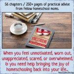 Homeschooling ~ What To Do When You Want To Quit