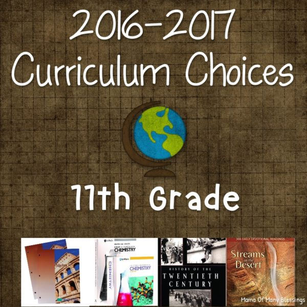 11th Grade Curriculum Choices 2016-2017