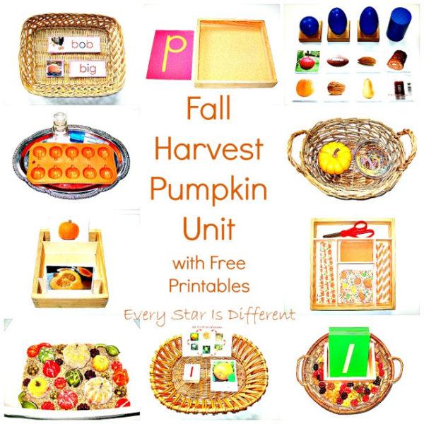 fall-harvest-pumpkin-unit