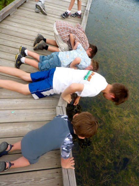 Outdoor Discovery Center Holland Michigan Field Trips In Michigan