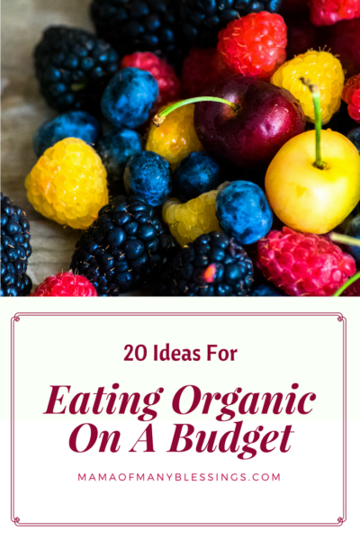 Eating Organic Food On A Budget Pinterest
