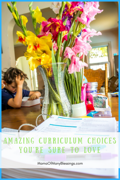 Amazing Curriculum Choices Youre Sure To LOVE Sonlight Pinterest 1 image