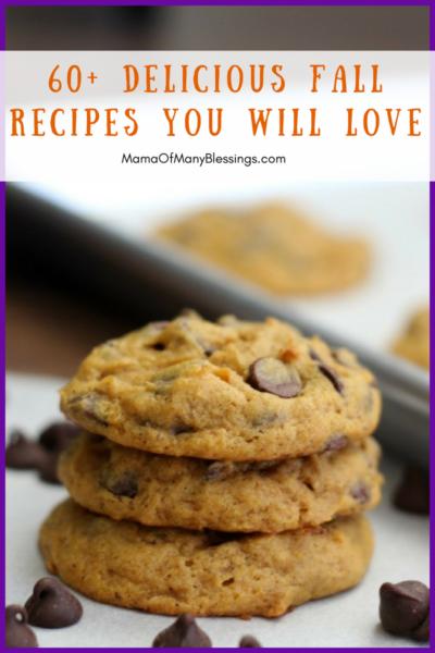 60+ Fall Recipe Ideas You Will LOVE Big Photo