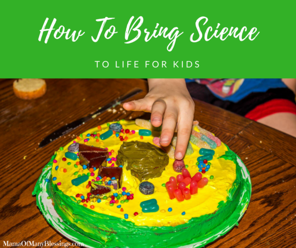 How To Really Bring Science To Life For Kids