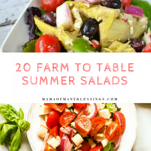 20 Farm To Table Summer Salads