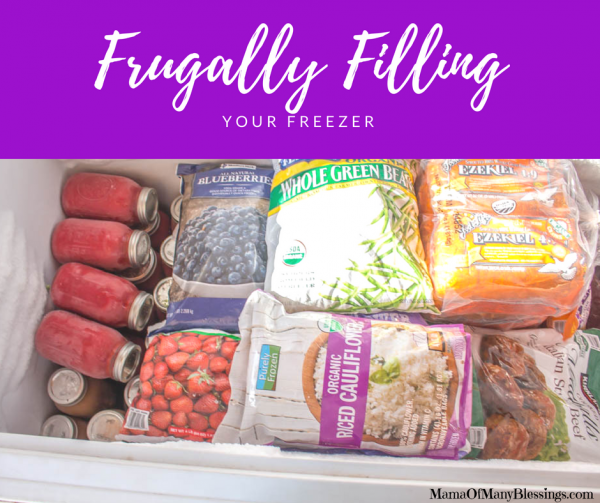 How To Frugally Fill Your Freezer