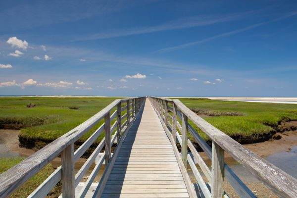 Bass Hole Boardwalk, Yarmouth, Cape Cod