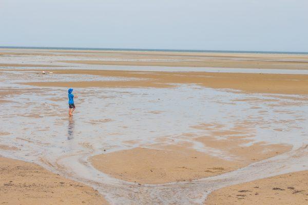 Cape Cod Brewster Salt Flats-1