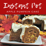 Instant Pot Apple Pumpkin Bunt Cake
