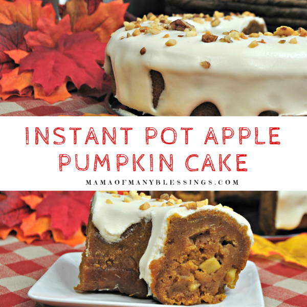 Instant Pot Apple Pumpkin Cake Square