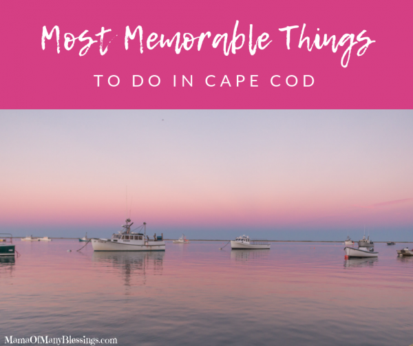 Most Memorable Things To Do In Cape Cod