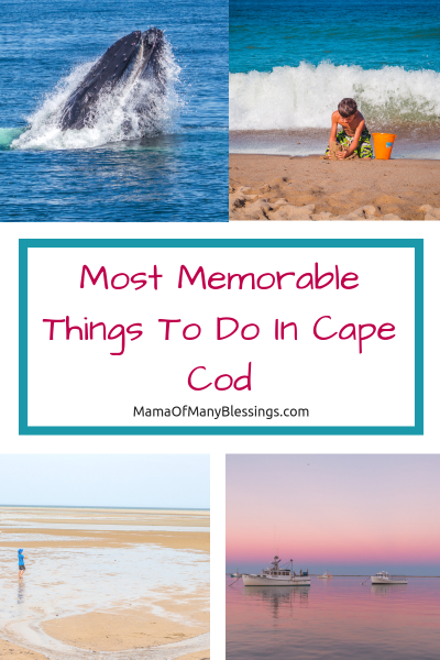 Most Memorable Things To Do In Cape Cod Pinterest