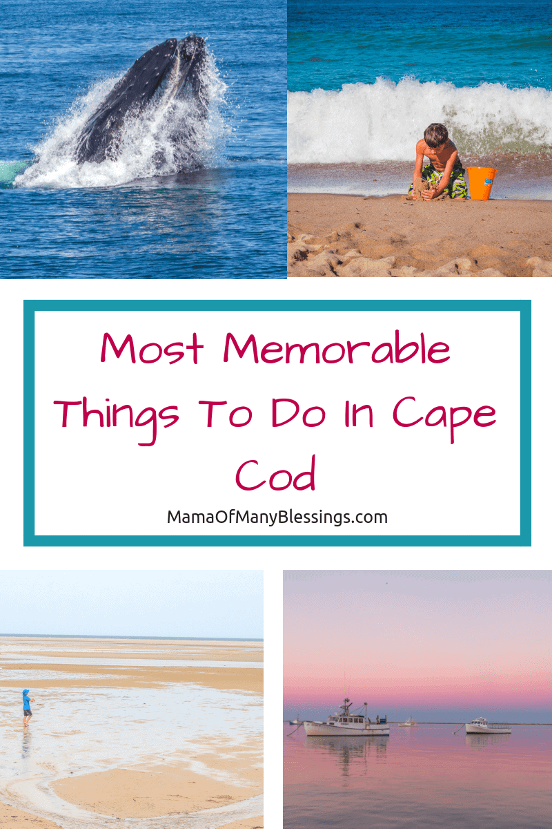 As a big family traveling to Cape Cod this summer was so much fun. Finding the most memorable but inexpensive things to do was a challenge, here are my tips.